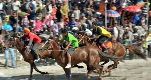 Sehari Jelang Pacuan Kuda, Penginapan di Blangkejeren Penuh