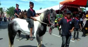 Stop Bencana bagi Pemilik dan Pecinta Pacuan Kuda Tradisional Gayo