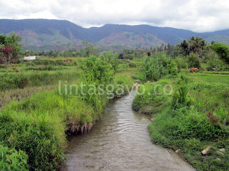 Sungai Aih Sejuk di Desa Penggalangan yang tak pernah kering. (LGco-Supri Ariu)