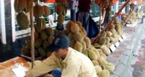 """Durian Kutacane """"Banjiri"""" Gayo Lues"""