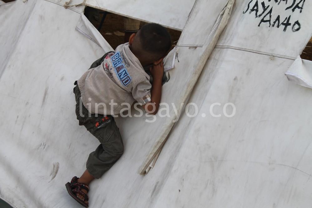 Dunia anak-anak yang suka memanjat-manjat. (tarina)