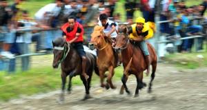 All Aceh Tengah Final Tersaji di Kelas B Tua Pacuan Kuda Gayo