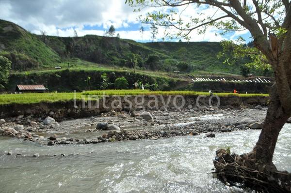 Sungai yang berbatas langsung dengan persawahan. (Kha A Zaghlul)