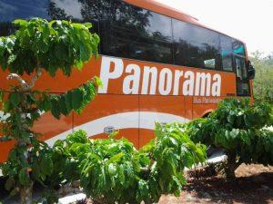 Bus Wisata di Kebun Kopi