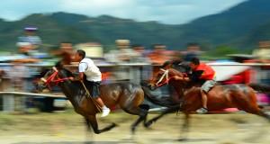 Yuli Wahid : Ari Zemen Ketumer Pacuan Kuda Gayo Begitu-Begitu Saja
