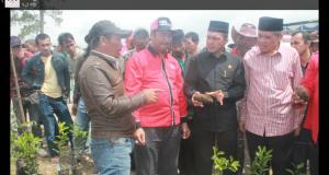 Kopi Arabika dan Kentang Produk Bener Meriah Bawa Aceh Ke Pangsa Pasar Dunia