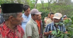 Petani Kopi di Ketol ikuti Sekolah Lapang Kopi Konservasi