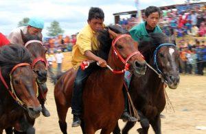 Kuda berpacu di Buntul Nege Gayo Lues. (LGco_Anuar Syahadat)