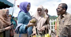 Marlina Mualem dan Afini Nasaruddin kunjungi PKK Desa Bies