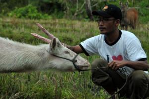 Penulis bersama Akang Putih (Jeget)  di Blangkejeren beberapa tahun silam.