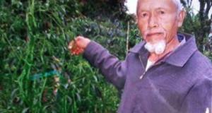 Haji Kasdi 'La Odeng' tak henti berkarya di usia senja