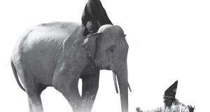 Guel, Tarian Sakral dan Estetis dari Gerakan Gajah