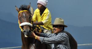 8-14 Agustus 2016 Pacu Kuda Gayo di Blangkejeren