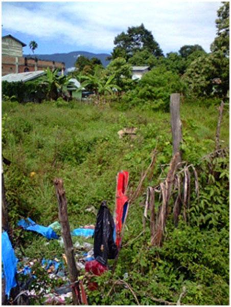 Kondisi Jeret Belene saat ini yang ditumbuhi semak belukar. (Foto : Syamsuddin Said)