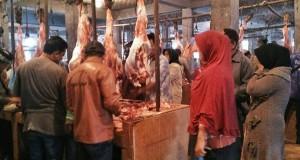Lindungi Konsumen Daging Megang, Distan Aceh Tengah Turunkan Petugas Kier Master