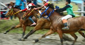 Ini Nama-Nama Kuda Final Pacuan HUT ke-439 Kota Takengon