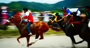 Nama-Nama Kuda Juara Pacuan HUT ke-439 Kota Takengon