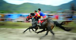22-28 Agustus 2016 : Pacu Kuda Gayo Digelar di Takengon