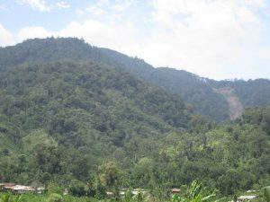 Salah Satu Kampung di Pining