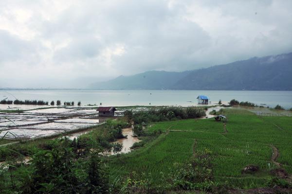 Lemo di kaki Bur Birah Panyang. (LGco_Munwardi)