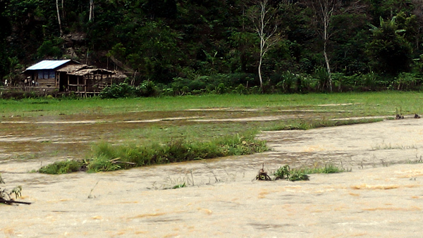luapan peusangan (4)