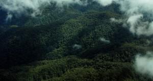 2 Warga Jagong Jeget Diduga Hilang Tersesat di Hutan
