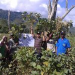 Laskar Ketahanan Pangan Linge Sukses Kembangkan Kedele di Ketapang
