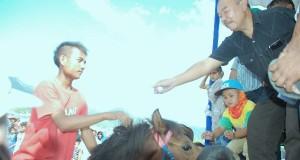 Ini Tanggapan Alamsyah Gayo Mengenai Peran Pacuan Kuda