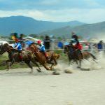 [foto] Aksi Kuda-Kuda Tangguh di Arena Pacuan Kuda Tradisional Gayo
