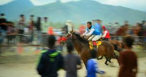 [21-27 Agustus 2017] Pacu Kuda Gayo di Takengon, Stop Judi!
