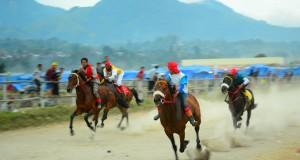 Cuaca Buruk, 4 Race Pacuan Kuda Gayo Dilanjutkan Besok