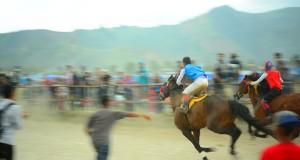 Semifinal Usai, 14 Race Panas Tersaji Pada Babak Final Pacuan Kuda Hari Jadi Kota Takengon ke-440