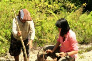 Foto: Stella bersama seorang warga Desa Rerebe, Tripe Jaya tengah mencari bahan untuk mengolah kapur secara tradisional (dok. Diansyah)