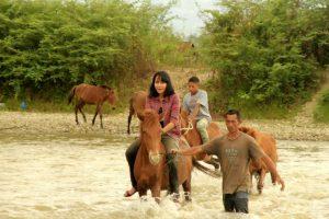 Presenter Jejak Petualang Stella Florensia Hutajulu di ajak belajar merawat kuda pacu tradisional Gayo di Desa Rerebe, Tripe Jaya (dok. Diansyah)