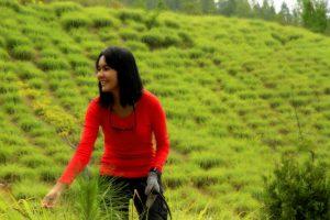 Foto: Gayo Lues sebagai daerah terbaik penghasil serai wangi di Aceh bahkan Indonesia juga tak luput dari kunjungan tim. Kali ini kru melihat proses penyulingan di Desa Badak, Dabun Gelang. (dok. Diansyah)