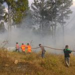 [foto] Pemadaman Kebakaran Hutan di Gayo Lues