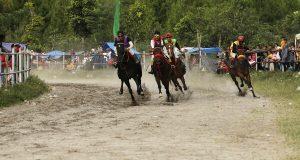 Nama-Nama Kuda Final Pacuan Kuda Hari Jadi ke-440 Kota Takengon