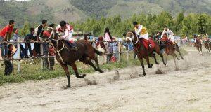 Hari Jadi Kota Takengon, 349 Ekor Kuda Berlaga di Belang Bebangka