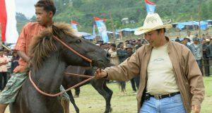 dr. Darma Tapa, Pemilik Kuda Terbanyak di Gayo
