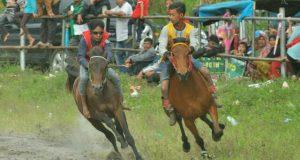 Final Pacuan Kuda, 1 Ekor Kuda Korban