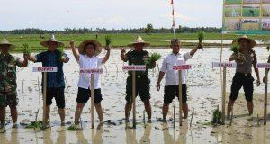 TNI Merupakan Motivator Petani