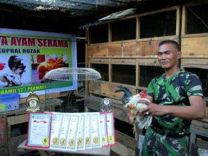 Koptu Rojak menunjukkan piagam penghargaan yang diperoleh lewat kontes Ayam Serama