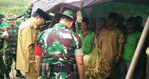 Meriahkan Pembukaan TMMD ke-97, BP3K linge Gelar Pameran Pertanian