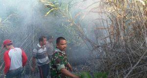 Polsek Linge Dibantu Warga dan Anggota Koramil Padamkan Api di Hutan Pinus