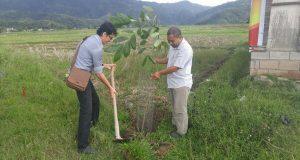 Peduli Lingkungan, Karyawan PT NK Tanam Pohon di Pegasing