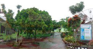 SMA 2 Timang Gajah Go Green School Go Prestasi
