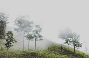 Cuaca syahdu (Foto: Adwin Maulana)