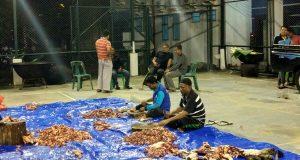 Serangkaian Kegiatan HAB ke-71 Kemenag Aceh Dibarengi Dengan Maulid Nabi