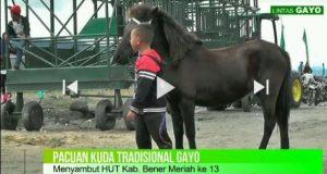 [LGtv] Pacu Kuda Gayo HUT Bener Meriah ke-13