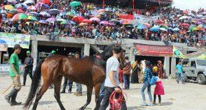 Aktivis Mensinyalir Pungli di Arena Pacu Kuda Gayo Bener Meriah